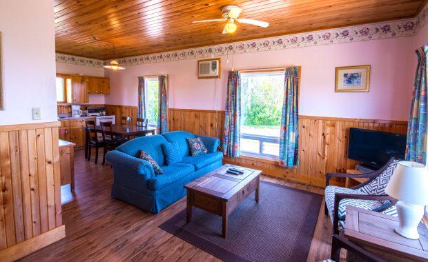 2 Bedroom Deluxe-Living Room|Kitchen